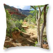 Over Slide Rock Throw Pillow