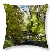 Oak Creek Canyon Creek Arizona Throw Pillow