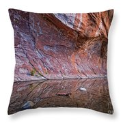 Oak Creek Reflection Throw Pillow