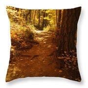 Oak Creek Trail Throw Pillow