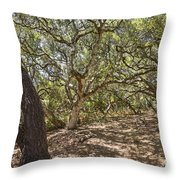 Oak Forest - The Magical And Mysterious Trees Of The Los Osos Oak Reserve Throw Pillow