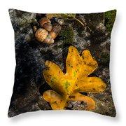 Oak Leaf And Acorn In Autumn Throw Pillow