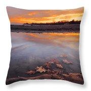 Oak Leaf And Beach Sunset Throw Pillow