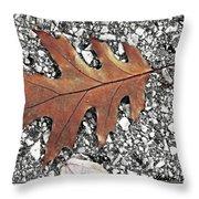 Oak Leaf On Asphalt  Throw Pillow