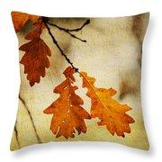 Oak Leaves At Autumn Throw Pillow