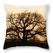 Oak Lit Throw Pillow