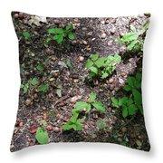 Oak Nursery Throw Pillow