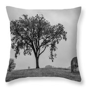 Oak Ridge 2698 Throw Pillow