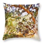 Oak Throw Pillow