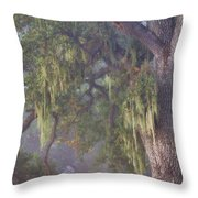 Oak Tree And Spanish Moss In The Mist Throw Pillow