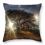 Oak Tree At The Plateau Throw Pillow