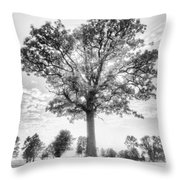 Oak Tree Bw Throw Pillow