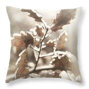 Oak Tree Leaves Frozen In Ice Throw Pillow
