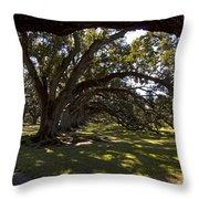Oak Trees   #5794 Throw Pillow