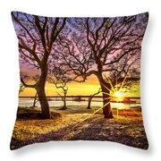 Oak Trees At Sunrise Throw Pillow