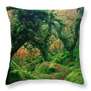 Oak Trees In A Forest, Wistmans Wood Throw Pillow