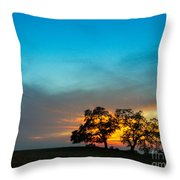 Oaks And Sunset 2 Throw Pillow by Terry Garvin