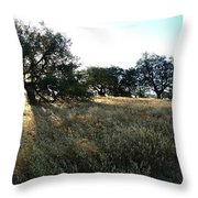 Oaks At The Plateau Throw Pillow