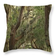 Oaks Of Georgia Throw Pillow