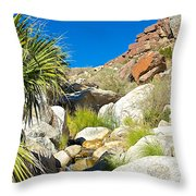 Oasis On Borrego Palm Canyon Trail In Anza-borrego Desert Sp-ca Throw Pillow