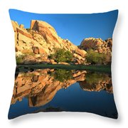 Oasis Reflections Throw Pillow