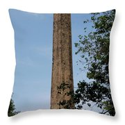 Obelisk - Central Park Nyc Throw Pillow