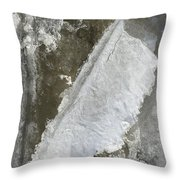 Object Of Interest Throw Pillow