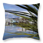 Obscured View Of Percival Landing Throw Pillow