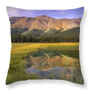 Observation Peak And Coniferous Forest Throw Pillow