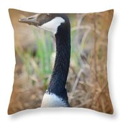 Observationist Throw Pillow