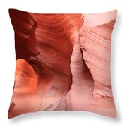 Observing The Pathway Throw Pillow