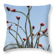Ocatillo With Red Blossoms Throw Pillow