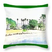 Ocean Beach Throw Pillow