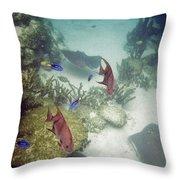 Ocean Bottom Throw Pillow