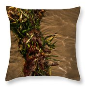 Ocean Bouquet 4 Throw Pillow