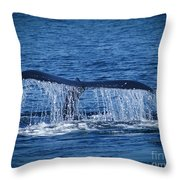 Ocean Dive Of The Humpback Whale Throw Pillow
