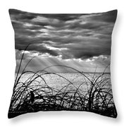 Ocean Rays Black And White Throw Pillow
