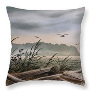 Ocean Shore Throw Pillow by James Williamson