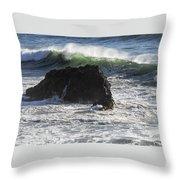 Ocean Spray Throw Pillow