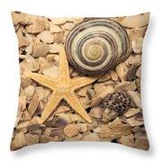 Ocean Treasure Trove Throw Pillow