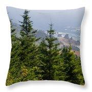 Ocean Vista Throw Pillow