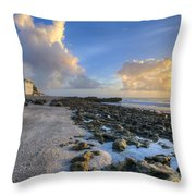 Oceanfront Throw Pillow