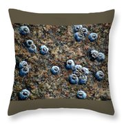 Ocean's Quilt Throw Pillow