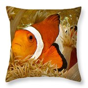 Ocellaris Clown Fish No 1 Throw Pillow