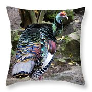 Ocellated Turkey Throw Pillow