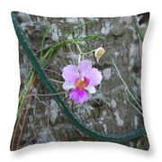 Ochid Throw Pillow