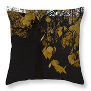 Ochre And Umber Throw Pillow