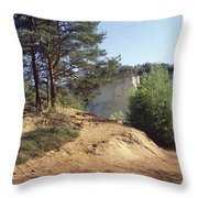 Ochre Throw Pillow