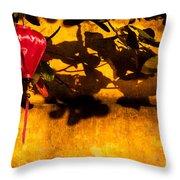 Ochre Wall Silk Lantern 02 Throw Pillow