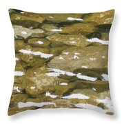 Ocoee River Throw Pillow